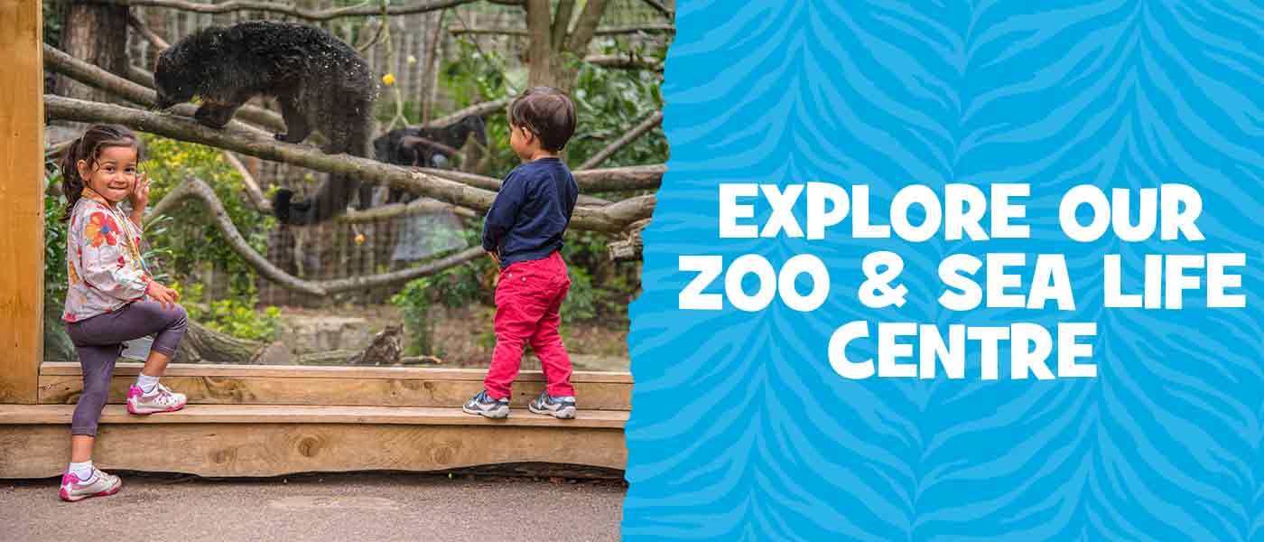 Zoo and SEA LIFE centre at Chessington World of Adventures Resort