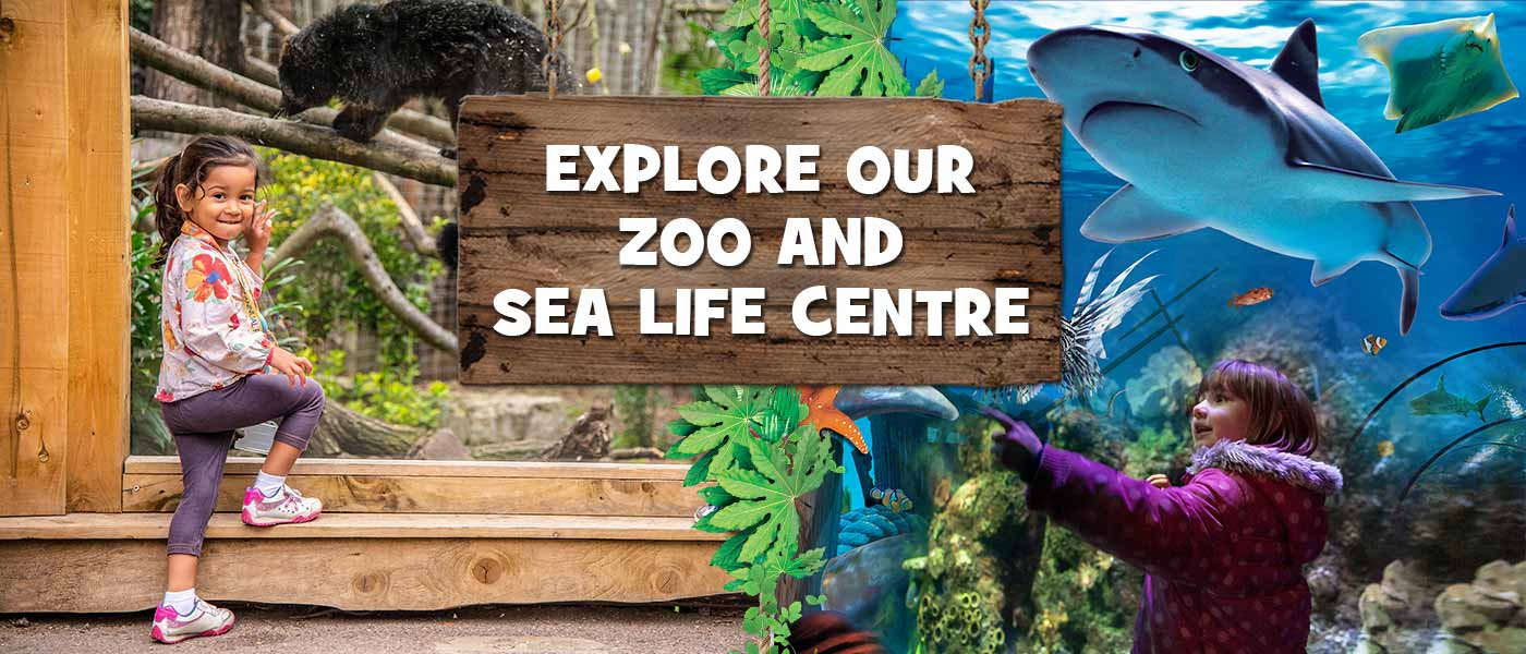 Chessington Zoo and SEA LIFE centre