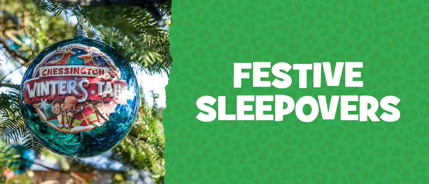 Festive Sleepovers at Chessington 2020