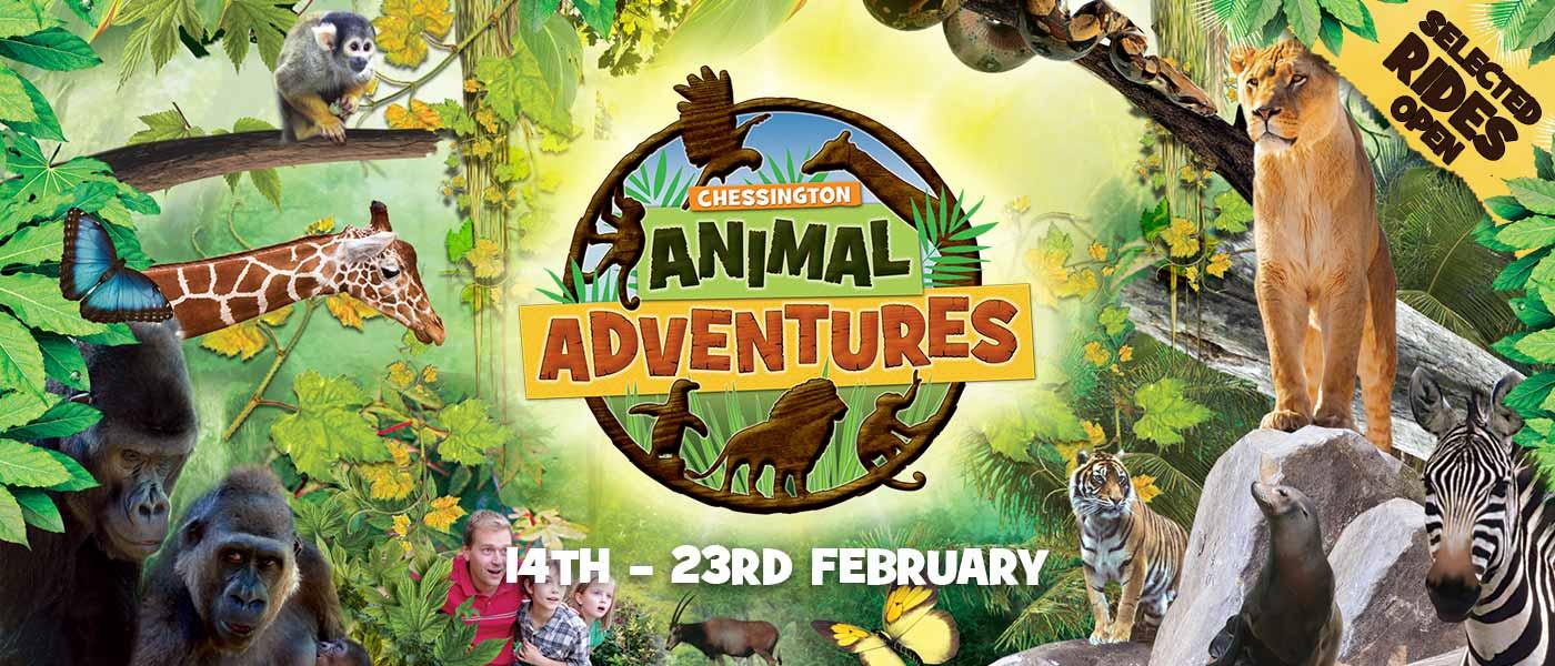 February Half Term 2020 at Chessington World of Adventures Resort