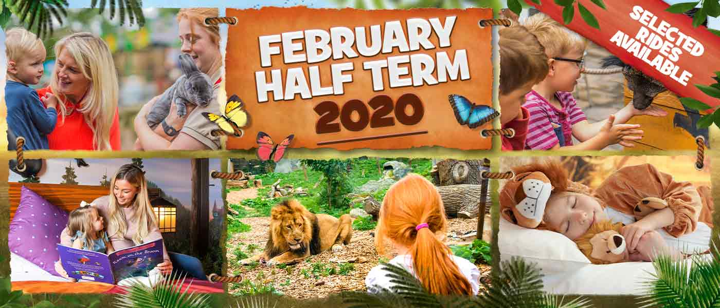 February Half Term 2020 at Chessington