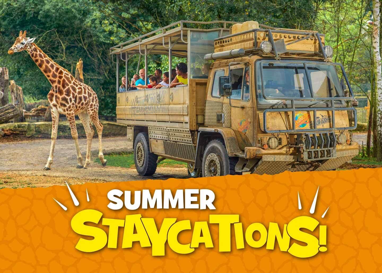 Summer Holidays at Chessington World of Adventures Resort