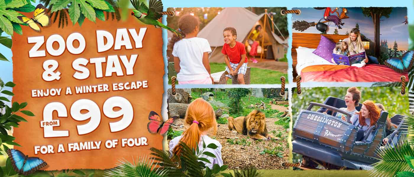 Zoo Day and Stay at Chessington