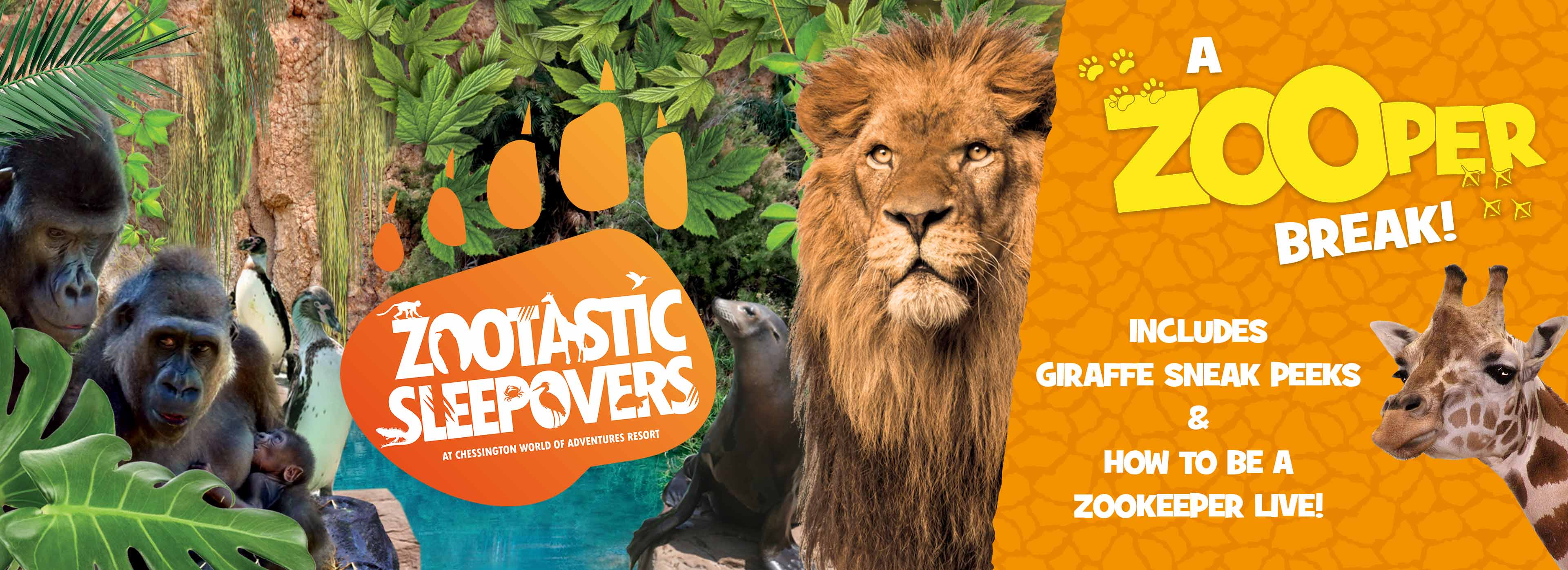 Zootastic Sleepovers at the Chessington World of Adventures Resort