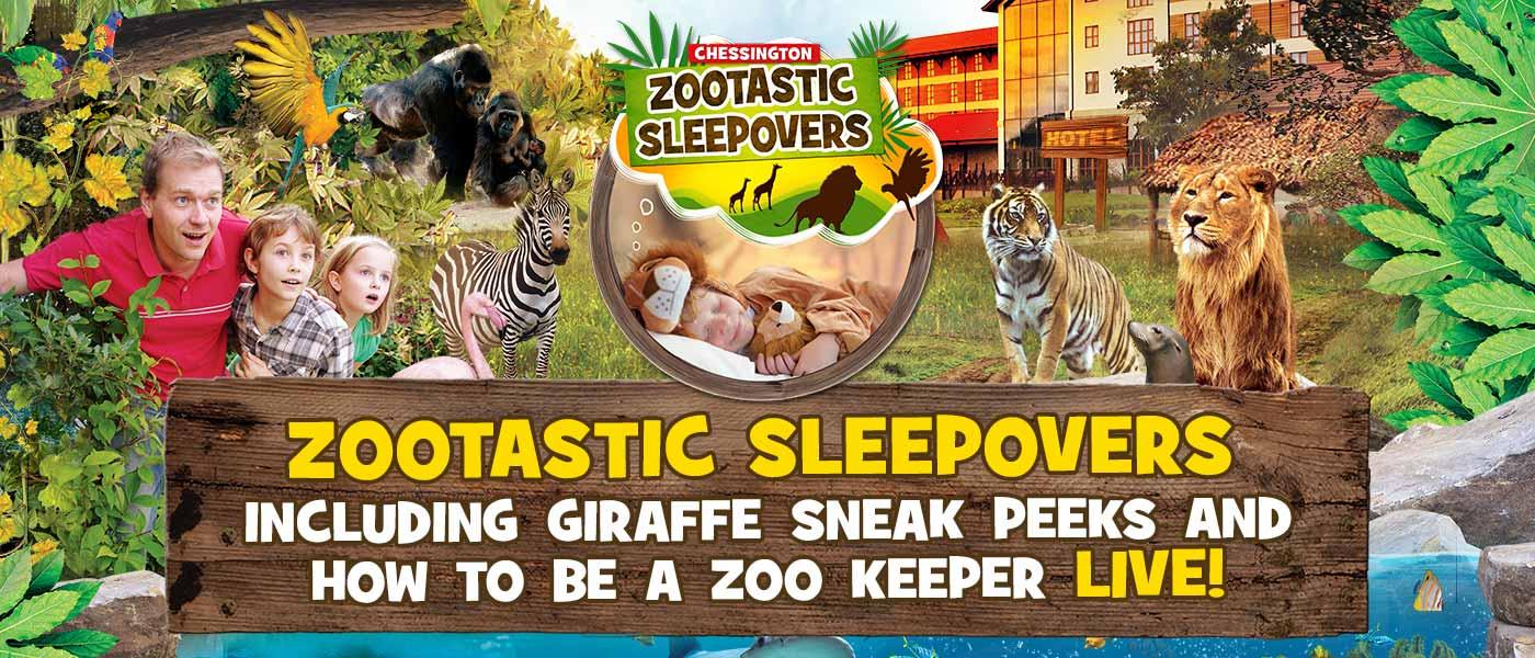 Zootastic Sleepovers at Chessington